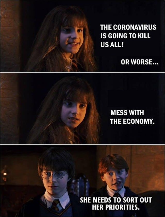 Priorities Funny Harry Potter Hermione Harry Potter Jokes Harry Potter Ron