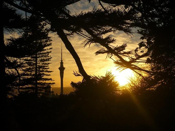 sunrise - overlooking the sky tower (Auckland) @pilaricke