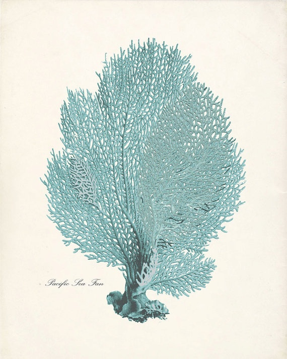 Vintage Sea Coral Print | For the Home | Pinterest