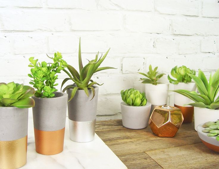 Some of the gorgeous new concrete + metallic succulent planters that have just arrived at www.ifoundlove.com.au.   (http://www.ifoundlove.com.au/tall-concrete-pots-set-grey-metallic/)
