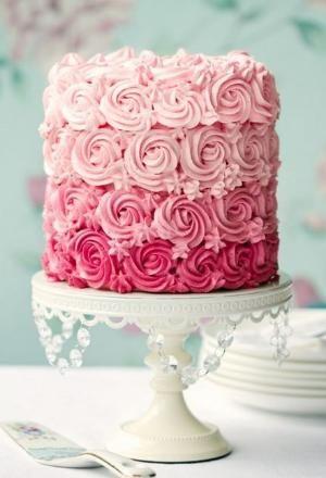 Pink Rose Ombre Cake by caroline