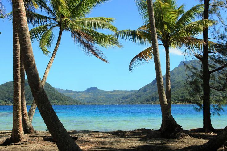 Islas Privadas de Ensueño #Tahití es todavía más hermosa vista desde aquí… #aorillasdelmar #lujo #magia #maravilloso http://bit.ly/28XfClb