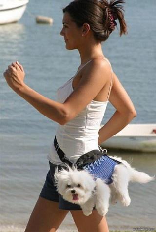 j'hallucine! pas pire que tous ceux que je croise ts le sjours avc leur poussette pour chiens!
