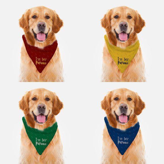 Dog Bandana Pet Bandana Daisy Bandana Pet Neckwear Potters Golden Snitch Pet Bandana Cat Bandana