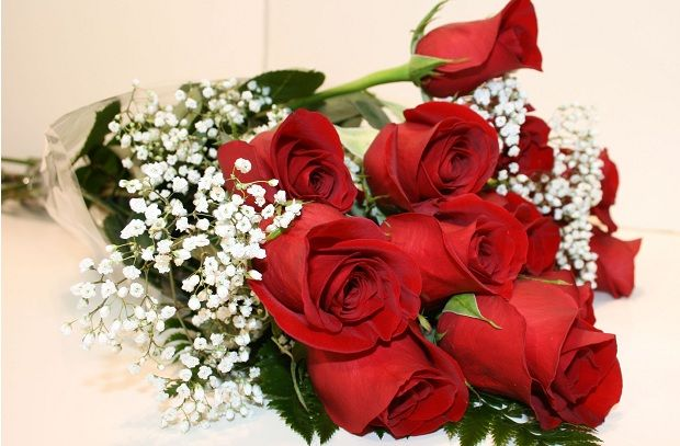 https://www.classifiedads.com/advertising/x51b9h7smdww More Info Here - Valentines Day Rose, Bring It Here Booty's Up On The Opposite Way; It's Most Wish A Bullet Oh, Darling One, Fragrances Simply Wish This. Valentine Flowers,Cheap Valentines Day Flowers