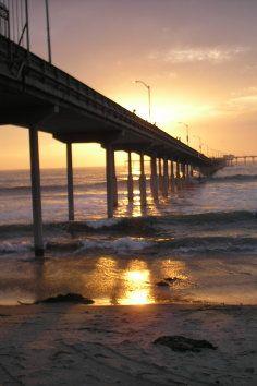 I love thus place! Ocean Beach in San Diego California has a Dog Beach Park!