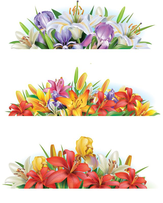 Set banners with flowers