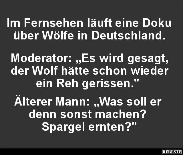 Im Fernsehen läuft eine Doku über Wölfe in Deutschland.. | Lustige Bilder, Sprüche, Witze, echt lustig