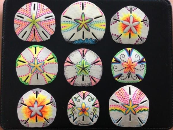 They Were Just Ordinary Sand Dollars — Until She Transforms Them Into THIS!