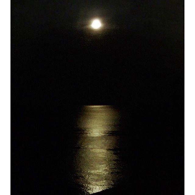 【yumimi331】さんのInstagramをピンしています。 《… おはようございます しつこく😅旅の思い出post lastです…… ☽°.* 昨夜は十五夜でしたがお月様は見えませんでした~😢 なので先週の月を… ☽°.* ☽°.* これ、「月の道」って言うんだそうです。 海の町に住んですけど知りませんでした😁 ☽°.* ひと月にほんの数日、満月の前後の数日間だけ見ることができる「月の道」。海から月が昇りはじめると、月光が海に映り、細長い光の道が海面に現れます…… ☽°.* 今週末も台風の影響でお天気不安定ですね~ 晴れ女パワー発揮できるといいな😊 ☽°.* 바다에 비치는 달의 길  #伊豆#堂ヶ島#月の道#月#空#夜空#海#moon#moonroad#moonright#sky#night sky#sea#nightsea #바다 #하늘 #밤하늘 #달 #달의길》