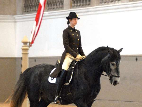 Hannah Zeitloser was one of the first female Eleves to ever be accepted into The Spanish Riding School and was promoted to Assistant Rider in May 2012