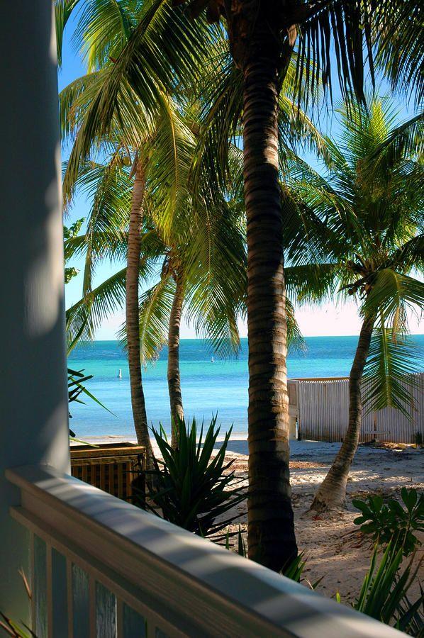 ✮ Louie's Backyard - Key West, FLA