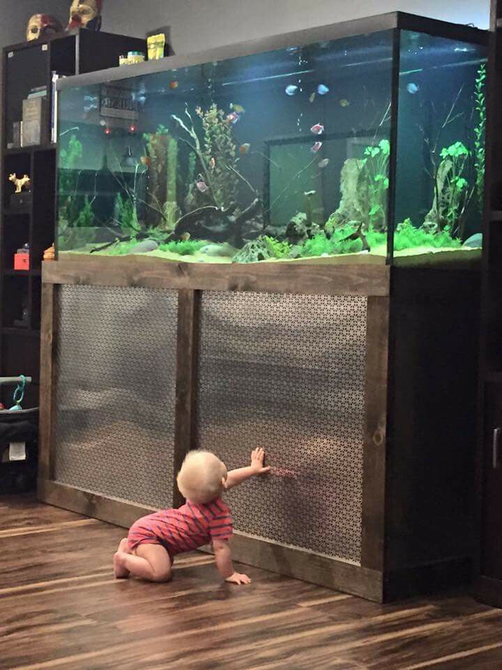 Best 20 Fish Tank Stand Ideas On Pinterest Tank Stand