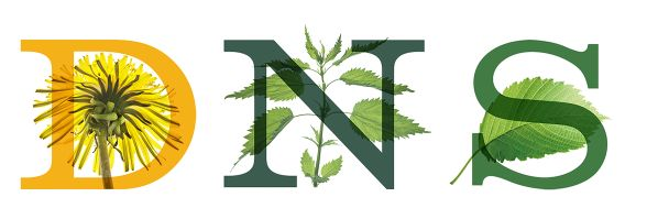 I'm a DNS--Dandelion Nettle Slippery Elm. Tough, loyal, and determined to speak up. What's your plant personality?  #herbnerd