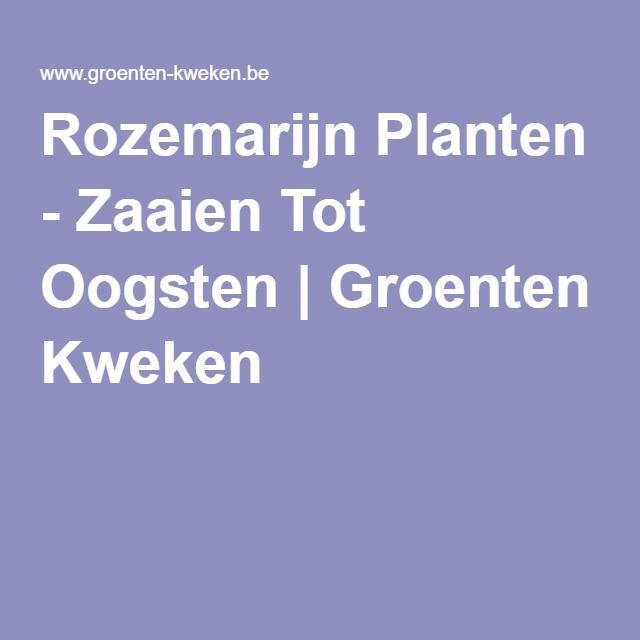 Rozemarijn Planten - Zaaien Tot Oogsten   Groenten Kweken