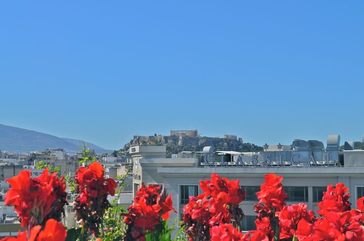 The all day meeting point of the #City. #Athens #Hotel