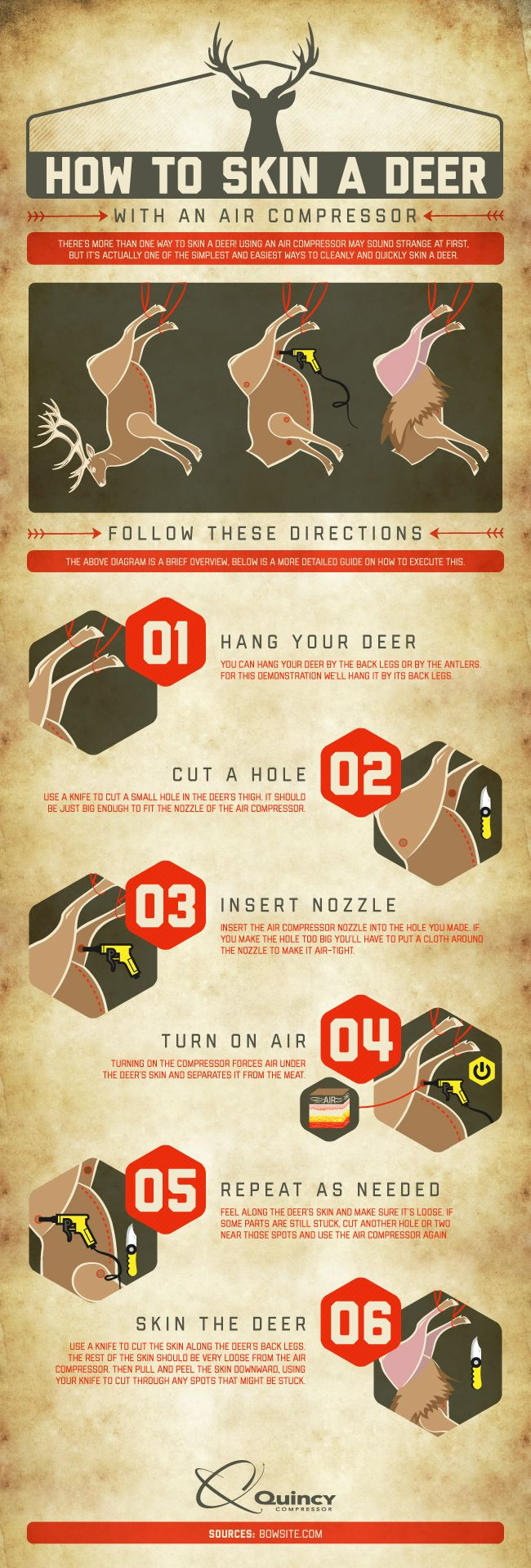 Skinning a deer this hunting season doesn't have to be difficult. Check out Quincy Compressor's infographic on how to properly your next doe/buck this hunting season with an air compressor.  #hunting