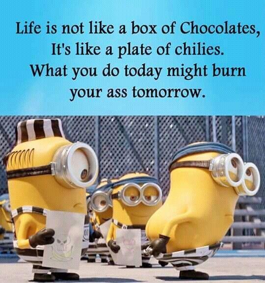 How perfect!!! - Funny Minion Meme, funny minion memes, funny minion quotes, Funny Quote, Minion Quote - Minion-Quotes.com