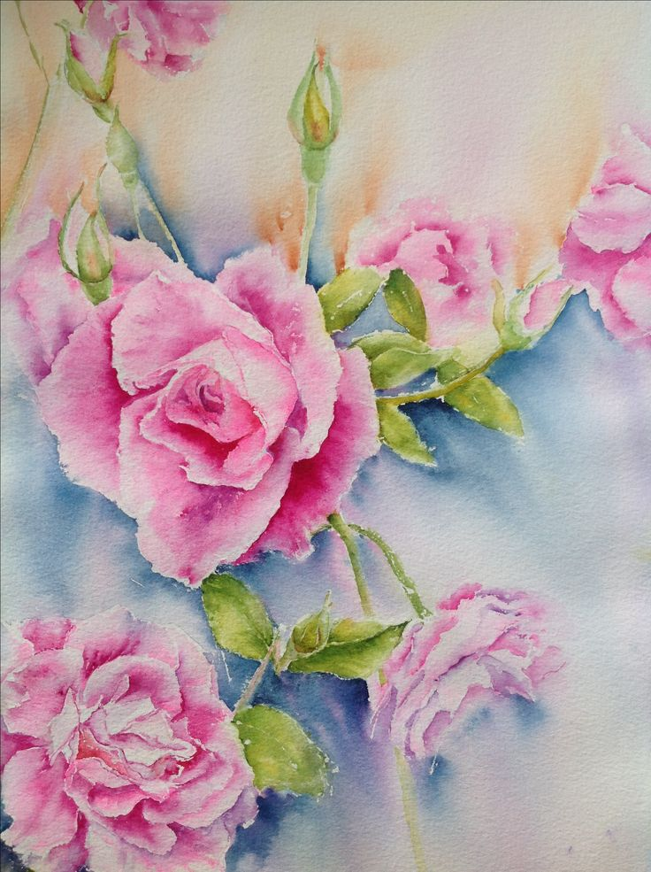 Roses watercolour