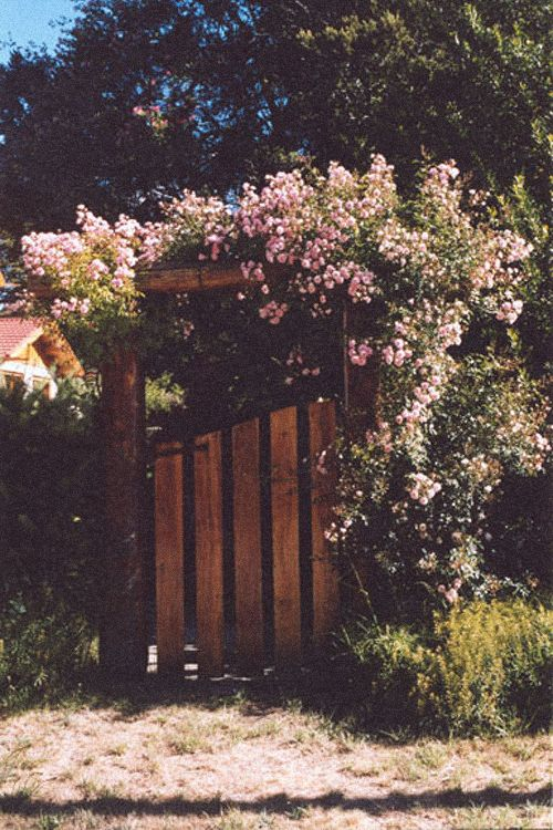 I want a gate like this to my own secret garden