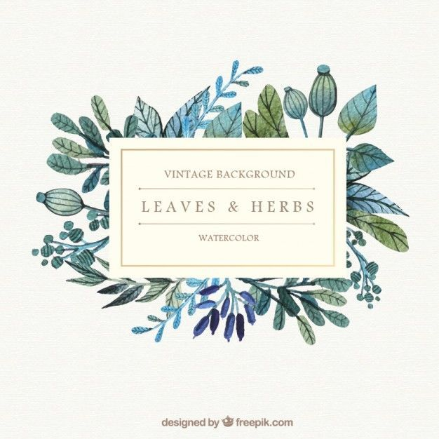 Watercolor leaves and herbs backgroundNice!