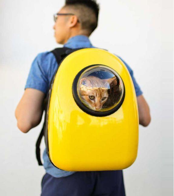 U-PET - Sac de transport pour chat