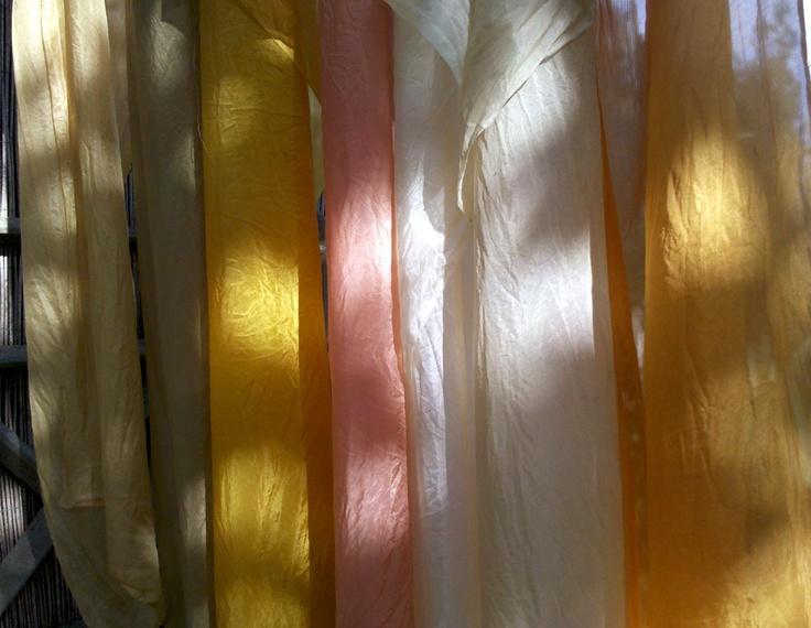 Da un laboratorio di tinture vegetali promosso dall Ass. 1virgola618, tenutosi a Morrona (PI). Melograno, Robbia, Cipolla, Edera, Calendula, ortica, ecc. Danno colori tenui ma ben diversi dai coloranti chimici!