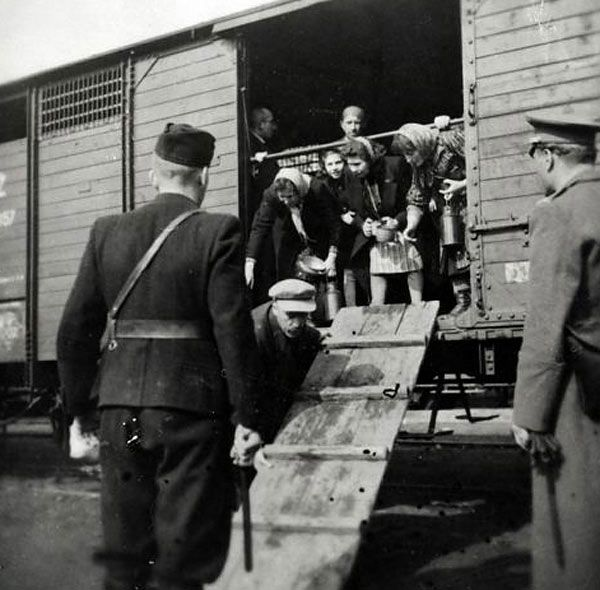 Image result for wwII cattle car