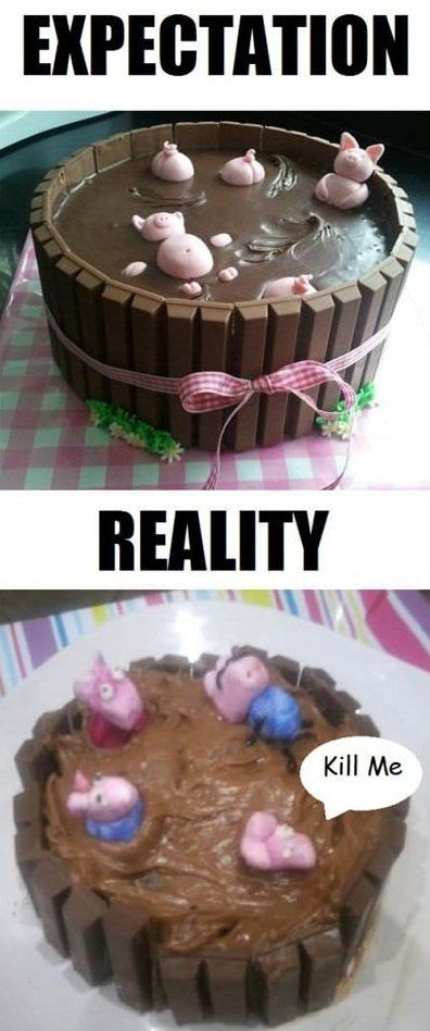 Funny - Expectation vs. Reality - www.funny-pictures-blog.com