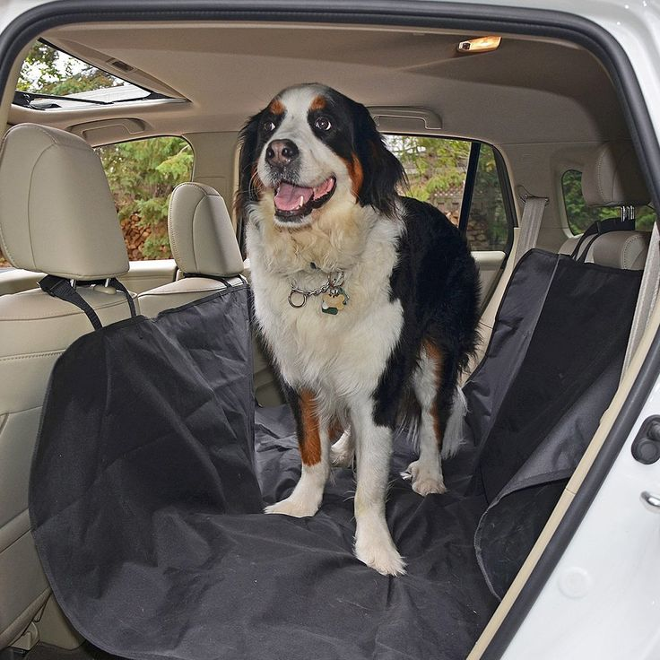 Waterproof Hammock Pet Seat Cover With Anchors For Cars Trucks And Suvs Nonslip Extra Side