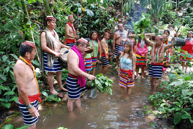 Economía La caza, la pesca y la recolección eran las principales actividades de su economía de subsistencia. Actualmente participan de la economía de mercado mediante la ganadería, la comercialización del plátano, el cacao, el café, el ecoturismo, además de la práctica de la medicina tradicional con fines comerciales.
