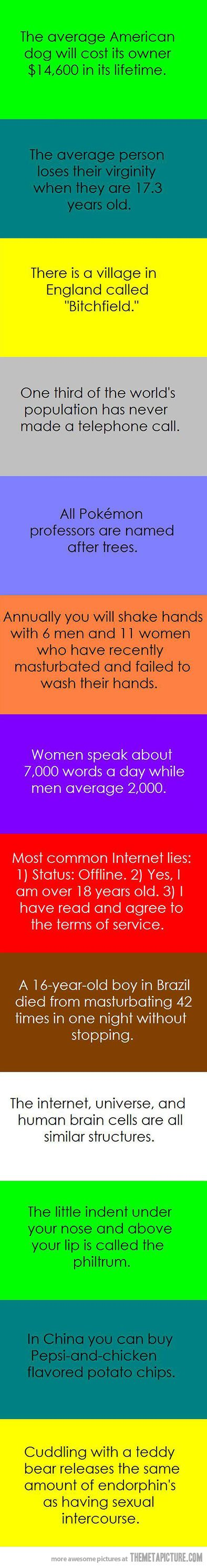 Facts you were not aware of... - The Meta Picture