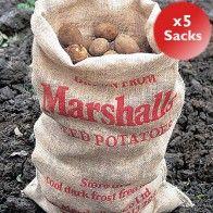 Hessian Potato Sacks x5