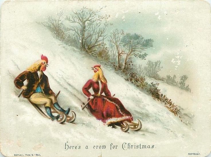 """""""Here's a crow for Christmas"""" (via TuckDB Ephemera)"""