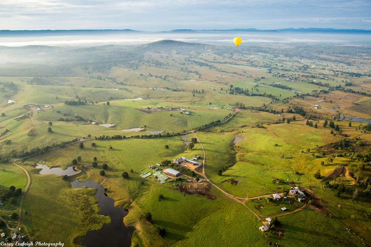 As the fog clears, marvel at the beauty of the Hinterland.