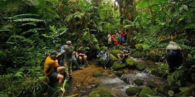 La Amistad International Park is for the adventurer in you. With challenging hiking trails, camp grounds and Costa Rica's most diverse wildlife, this park is sure to create memories. (And it's a World Heritage Site)