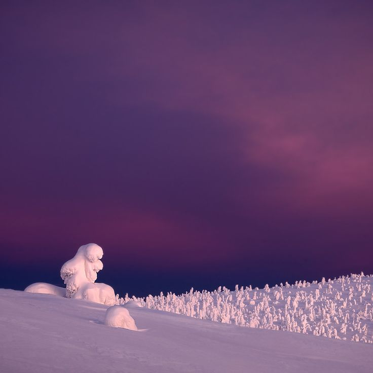 Photography-Finland - Martin Bauer Photography