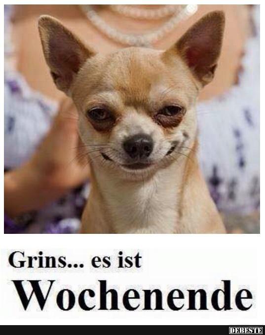 Grins.. es ist Wochenende | Lustige Bilder, Sprüche, Witze, echt lustig