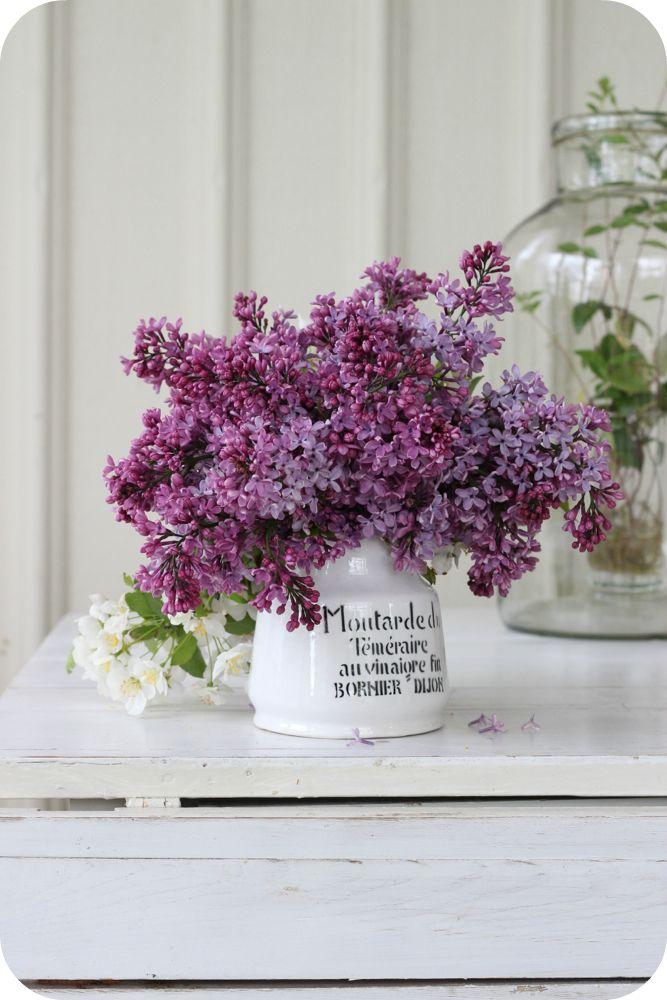 LILLA BLANKA: Syréntid ~ Lilac time
