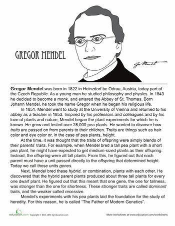 Worksheets: Who Is Gregor Mendel? | Scientists to study ...