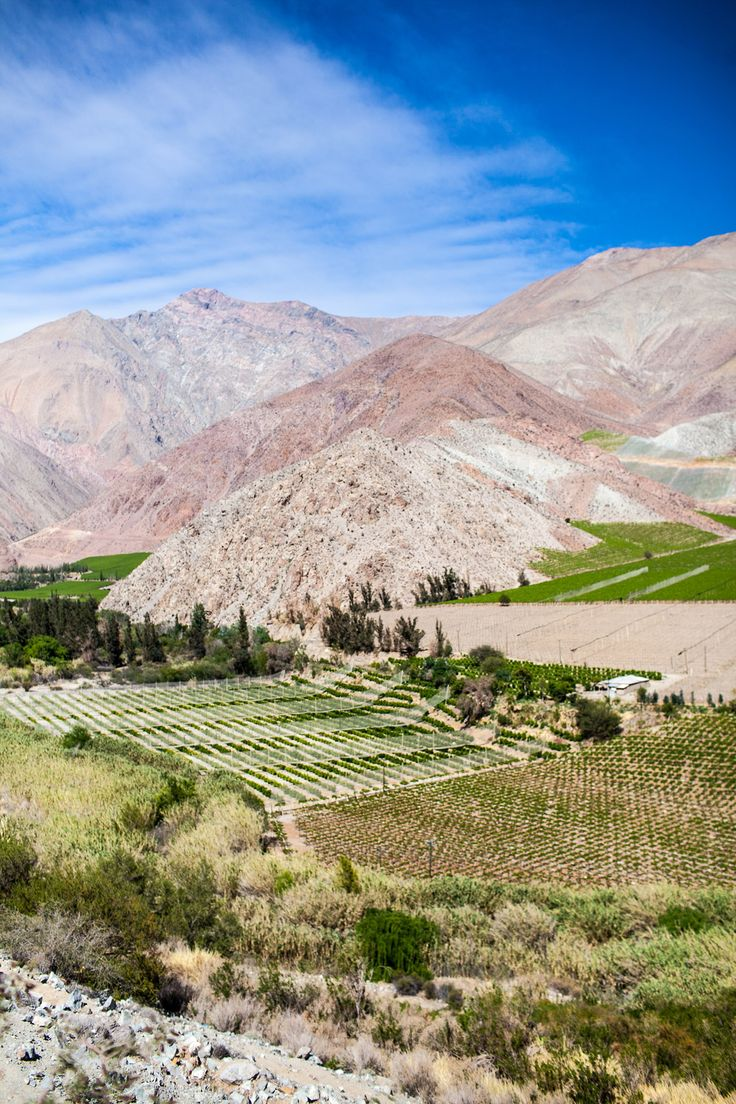 A Moment in Valle de Elqui