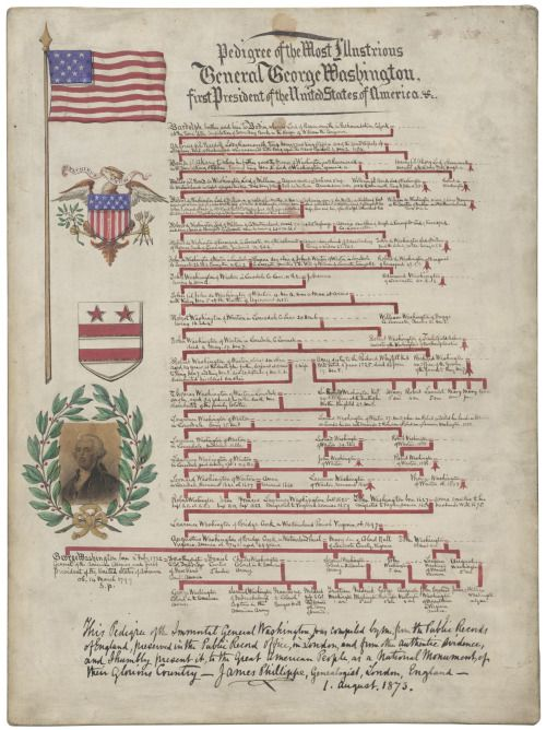 This illustrated lineage chart was presented by genealogist James Phillippe of London, England to President Ulysses S. Grant in 1873.  George Washington's Family Tree  Pedigree of the Most Illustrious General George Washington, first President of the...