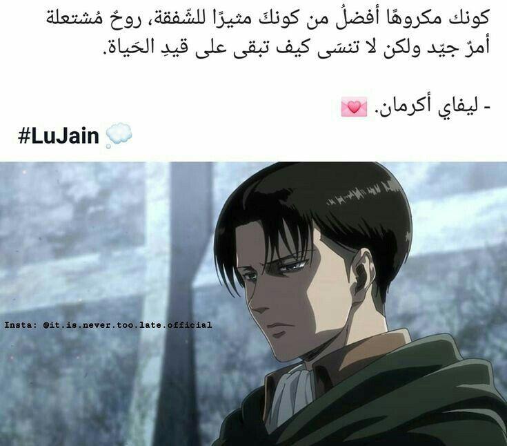 ليفاي اكرمان In 2020 Beautiful Arabic Words Love Quotes Wallpaper Funny Arabic Quotes