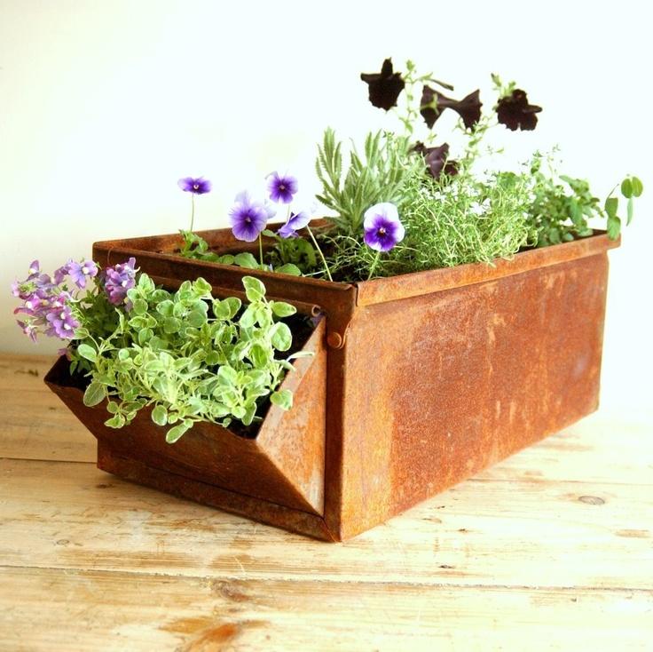 Vintage industrial metal apothecary draw bin planter