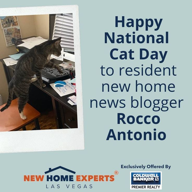 Did You Read Rocco S Latest Piece On Lennar S Year End Deals