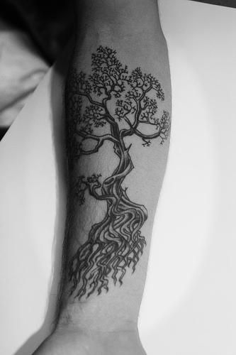 olive tree tattoo