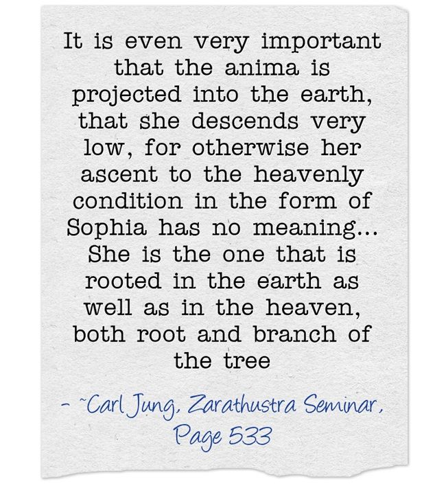 It is even very important that the anima is projected into the earth, that she descends very low, for otherwise her ascent to the heavenly condition in the form of Sophia has no meaning…She is the one that is rooted in the earth as well as in the heaven, both root and branch of the tree
