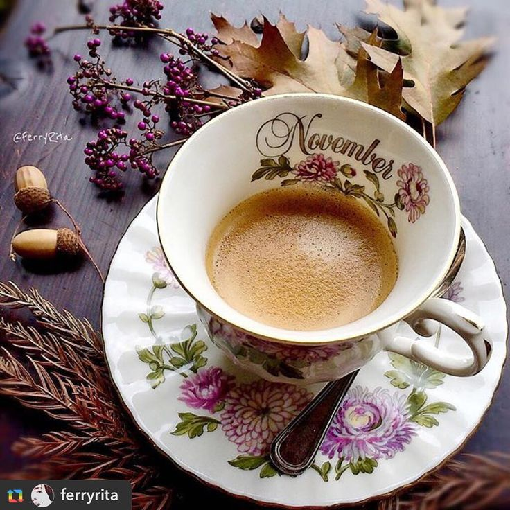 "54 Likes, 3 Comments - Parmangio (@parmangio) on Instagram: ""======> @ferryrita:WELCOME NOVEMBER ☕️🐿🍁... . .  #breakfast  #coffeetime #colazionetime…"""