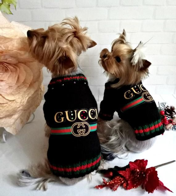 Dog Clothes Small Knitted Dog Sweater Yorkie Dog Winter Coat Pet