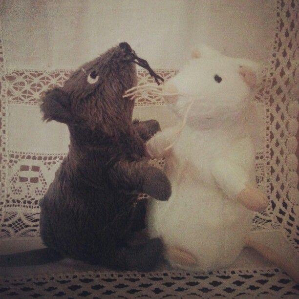 Os presento a Sha (gris) y Kira (blanca), mis dos nuevas ratas mascotas que estaran por mi coche! #ikeamola